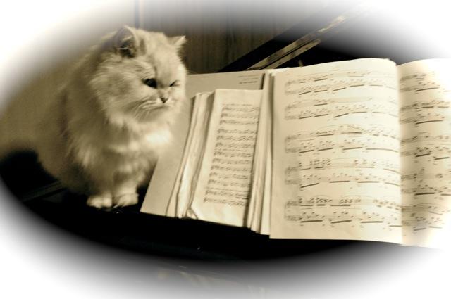 ナナと楽譜