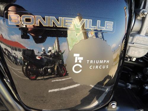 triunph circus