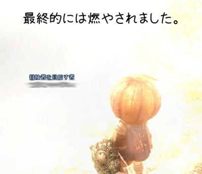 wo_20130511_3.jpg