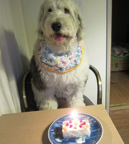6歳 おめでとう!