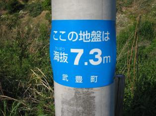 海抜7メートル