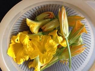 摘んだお花