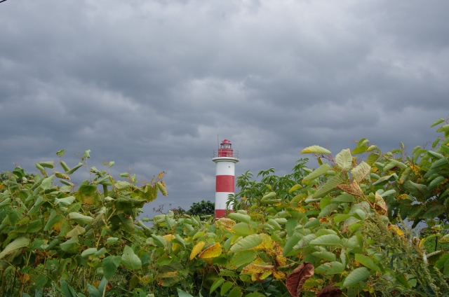 130914曇りがお似合い音稲府灯台