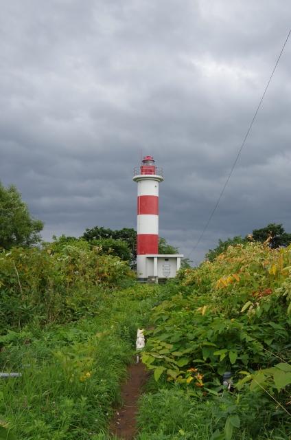 130914音稲府灯台とたつのすけ