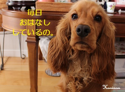 ブログ 4.28 ② IMG_0239