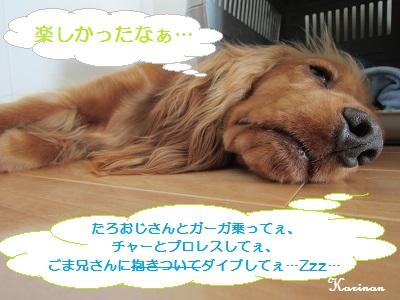ブログ 7.24 ① IMG_5103