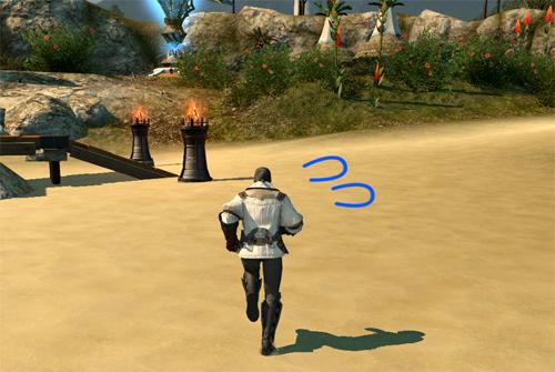 砂浜を焦って走るハイランダー