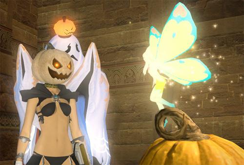 姐かぼちゃ