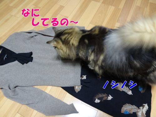 asujitaku3_text.jpg