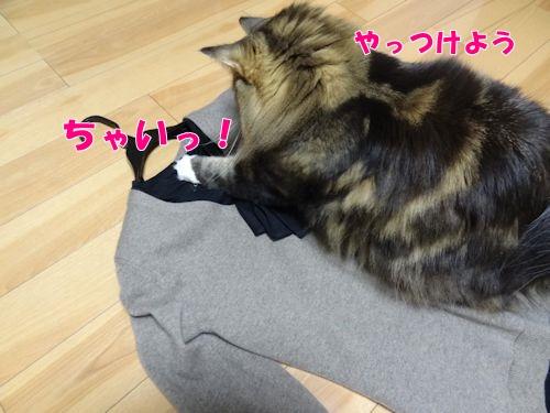 asujitaku5_text.jpg