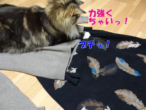 asujitaku7_text.jpg