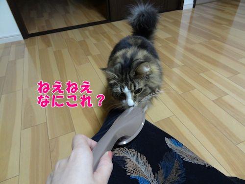 asujitaku9_text.jpg