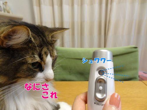 uruoi3_text.jpg