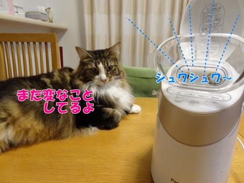 uruoi4_text.jpg