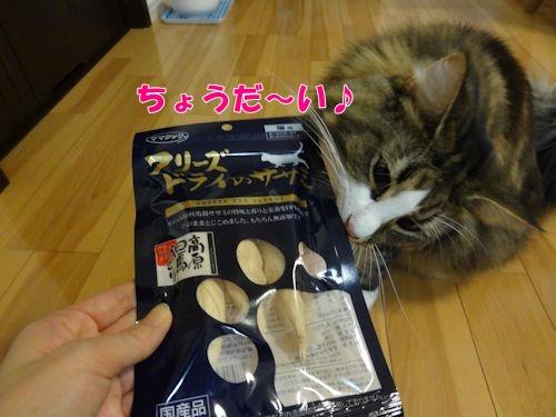 warashibe4_text.jpg