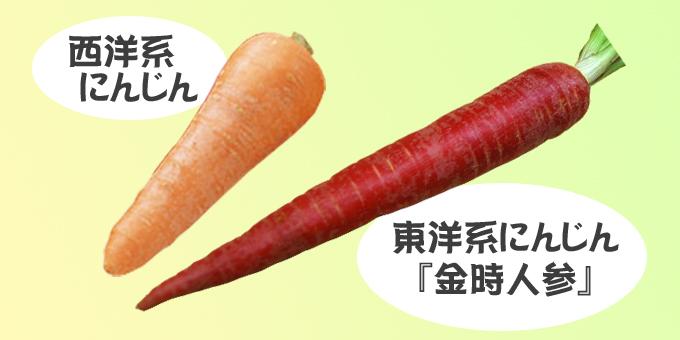 ninnjinn2ドレッシングの紹介 旬の野菜を使用した