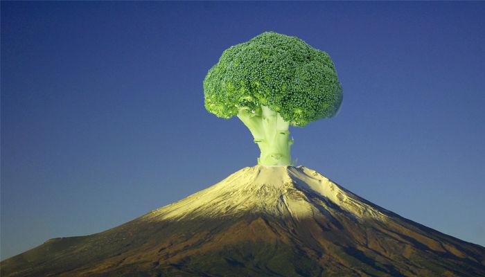 世界遺産富士山