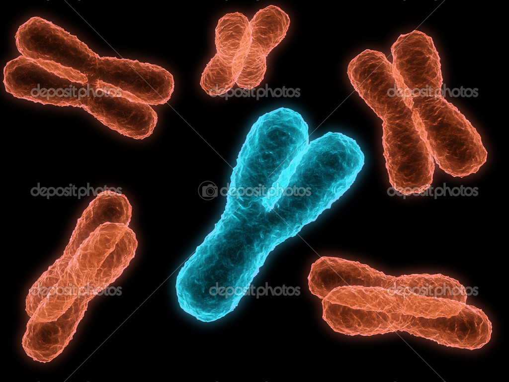 y chromosome dating Use the dating site that people in your area (that you want to meet) use or use several spend a day setting up your profile and choosing a handful of good photographs of yourself.