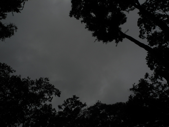 20130904 (14)