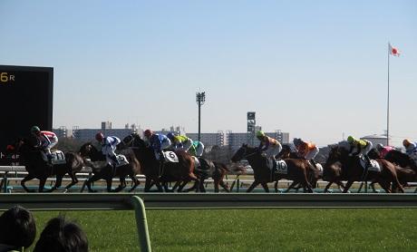 1・新馬・レース