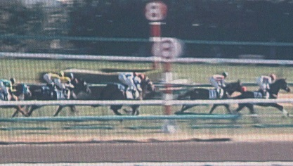 1・新馬・レースのビジョン
