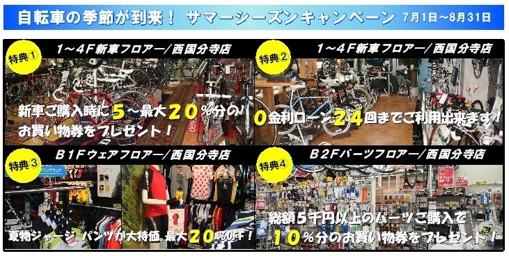 summer_campaign_2013_1.jpg