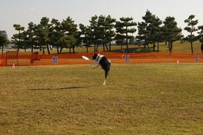 20141122アイぽん001