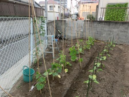 縺阪e縺・j繧呈、阪∴縺ヲ縺ソ縺セ縺励◆+003_convert_20130729194459