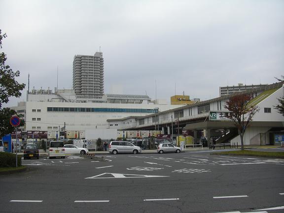 20131102霞ヶ浦 (2)