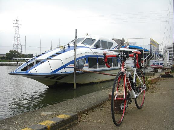 20131102霞ヶ浦 (3)