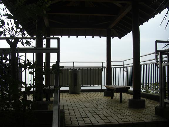 20131102霞ヶ浦 (10)