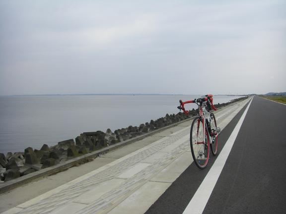 20131102霞ヶ浦 (16)