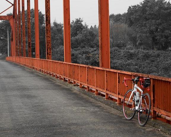 20131103印旛沼B (4)