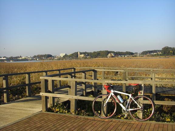 20131124小貝川付近 (8)