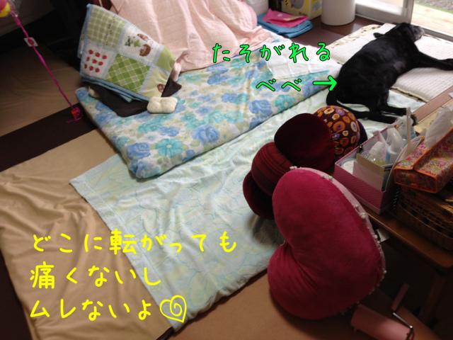 夏自宅 (3)