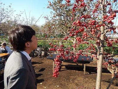 20131116木村市議収穫祭08