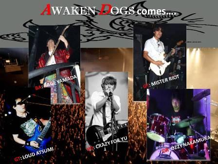 2013 Awaken Dogs