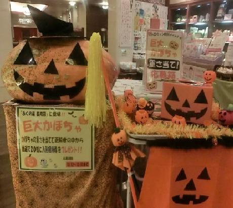 かぼちゃさん!