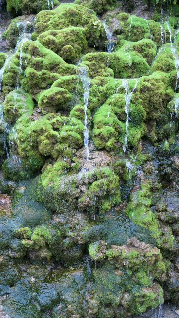 2013033021150000沖縄滝1