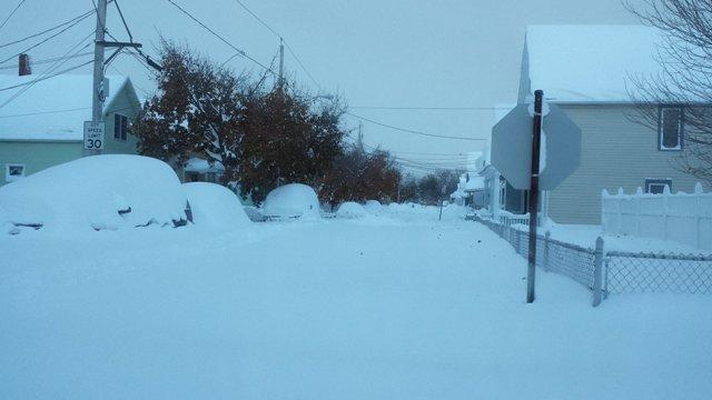 Buffalo-snow-cnn.jpg