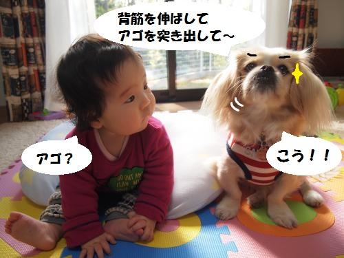 004_convert_20141202133433.jpg