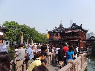 上海将棋交流 091