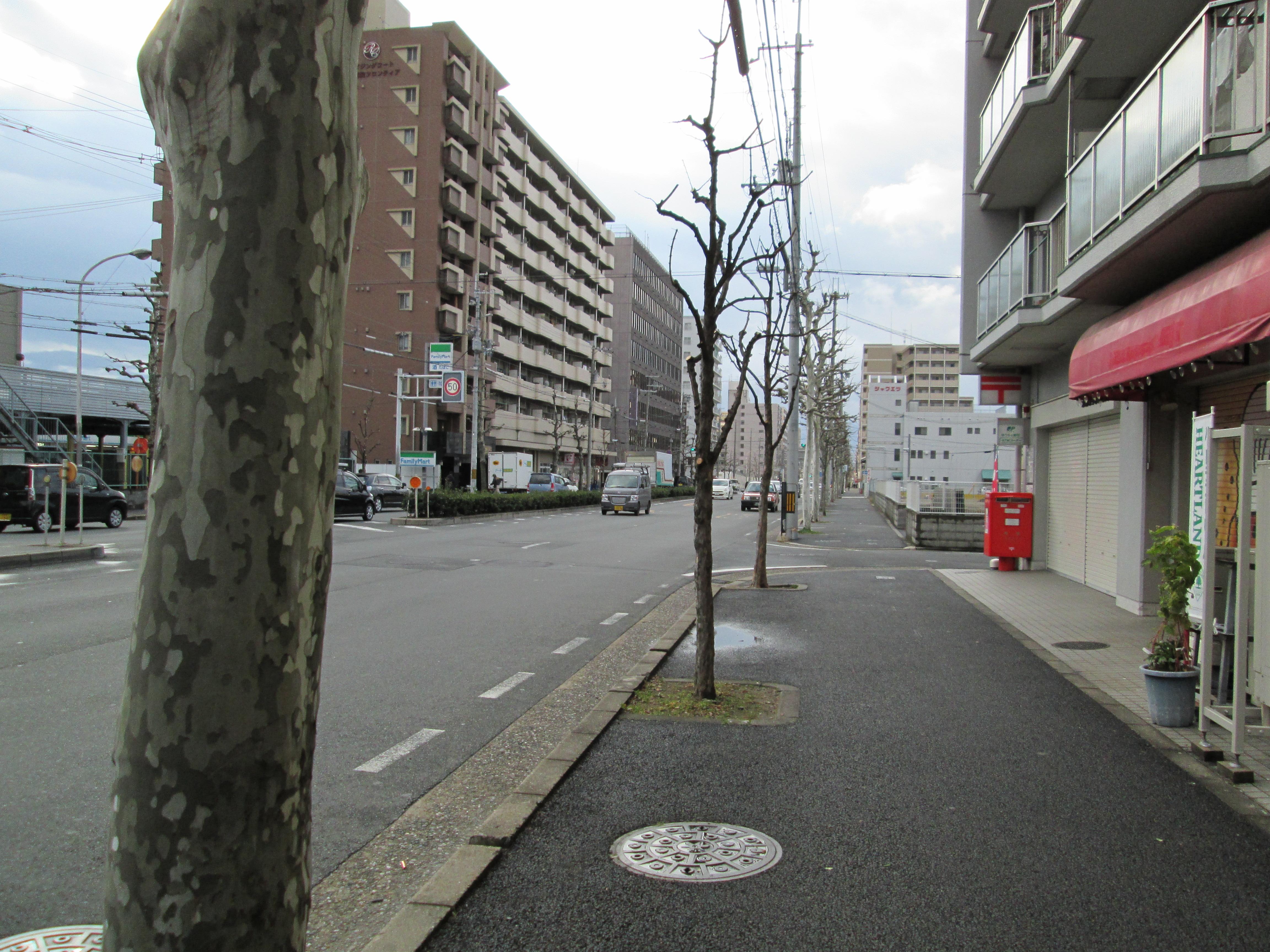 20140126IMG_4361.jpg