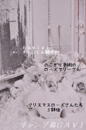 140208_2679.jpg