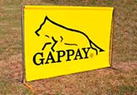 gappay障害