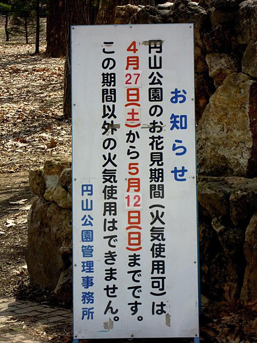 円山公園のお花見期間は4月27日から5月12日までです。