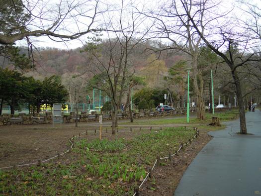 円山の春紅葉