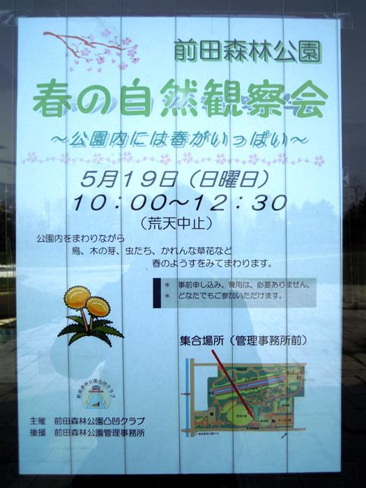 前田森林公園 春の自然観察会。