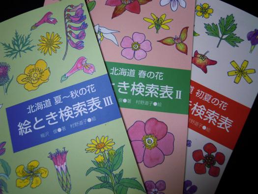 北海道 春の花 絵とき検索表