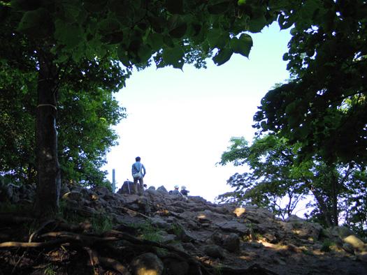 本日の円山頂上。